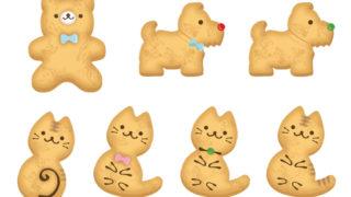 クッキー色々-1